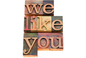 We-Like-You